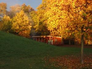 Wald-Igel Hütte